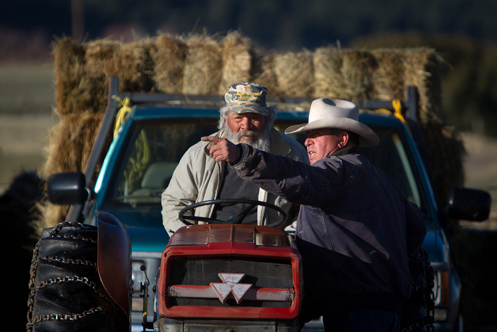 Manzanares shows Ubaldo Lasalle where to deposit a load of hay at to feed a large flock of sheep in Los Ojos, New Mexico